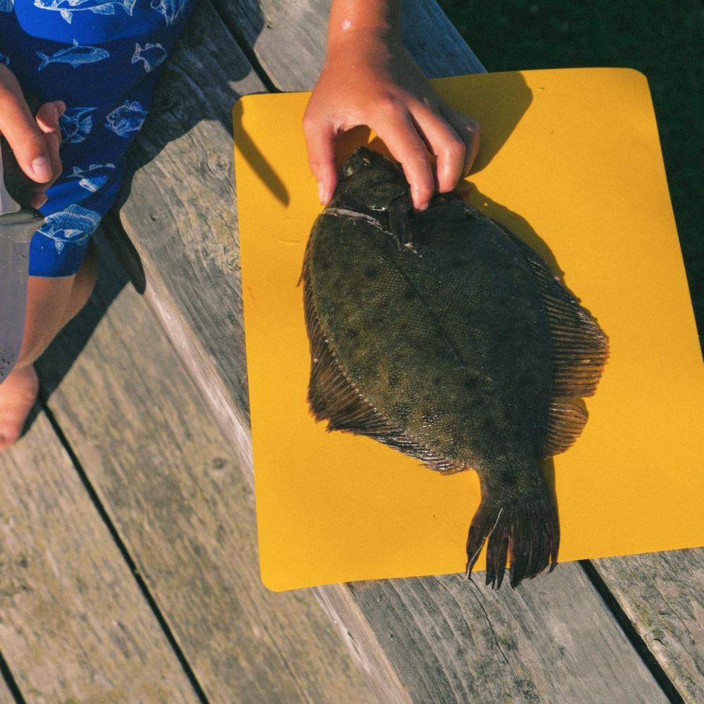 flounder-6-e1502840027479.jpg