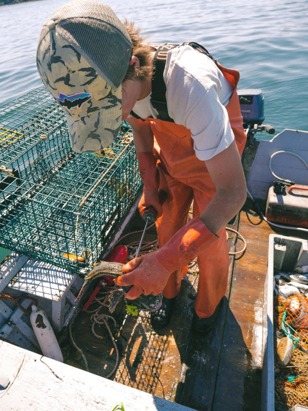 Lobster-7